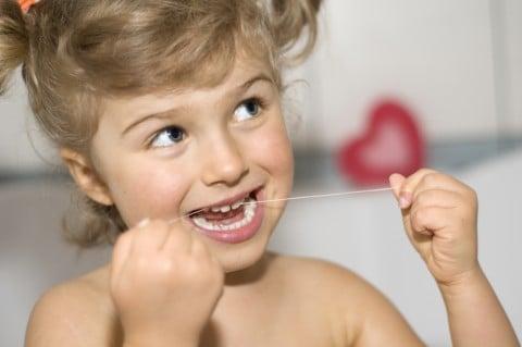 デンタルフロス 歯 歯間