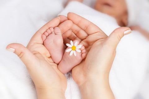 新生児 花 足 ママの手