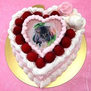 要出典 写真ケーキ お花茶屋コシジ洋菓子店 写真ケーキ スイートハート