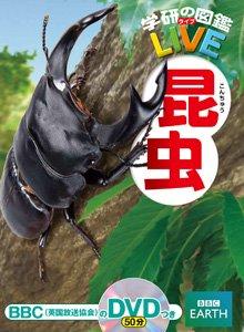 要出典 昆虫図鑑 昆虫(学研の図鑑LIVE)