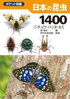 要出典 昆虫図鑑 ポケット図鑑 日本の昆虫1400