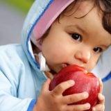 子供 男の子 りんご