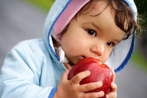 りんご病の症状は?発疹はかゆい?熱も出る?