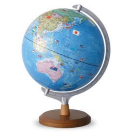 要出典 地球儀 子供 レイメイ藤井 地球儀 国旗イラスト付き 行政タイプ 30cm