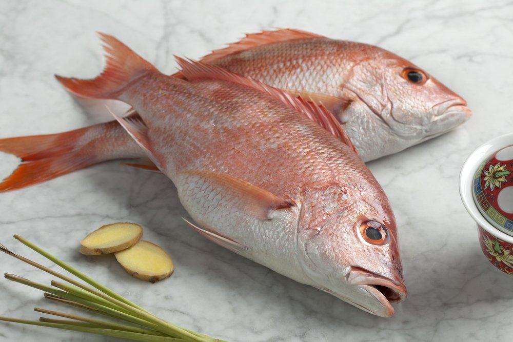 離乳食 初期 鯛