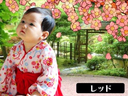 要出典 ひな祭りプレゼント ベビー用袴ロンパース