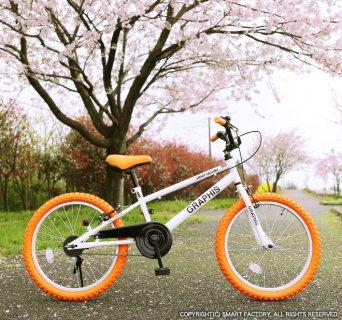 要出典 小学男入学祝い グラフィス 子供用自転車20インチ BMXタイプ
