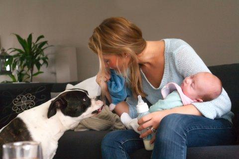 新生児 赤ちゃん 犬 ペット ママ