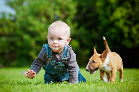 赤ちゃん 男の子 犬 公園