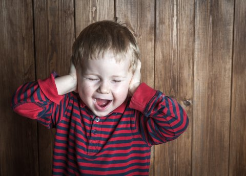 子供 叫ぶ 耳 痛い 耳鳴り