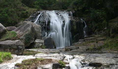 要出典 川遊び 加茂川 鳴滝森林公園 岡山県加賀郡