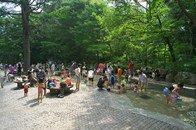 要出典 東京 じゃぶじゃぶ池 林試の森公園