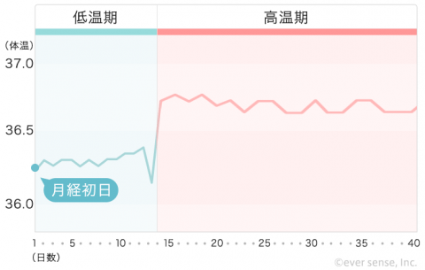 【740px】基礎体温表 ⑥高温期が長い(妊娠してる※使用頻度高め!)