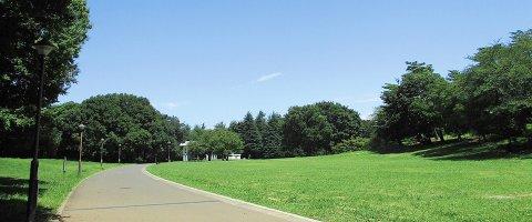 要出典 じゃぶじゃぶ池 光が丘公園 東京都練馬区