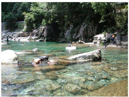 要出典 三重 川遊び 魚飛渓