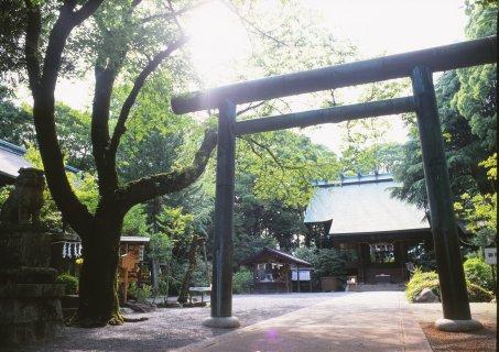 要出典 神奈川 七五三 報徳二宮神社