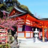 要出典 七五三 九州・沖縄 御館山神社