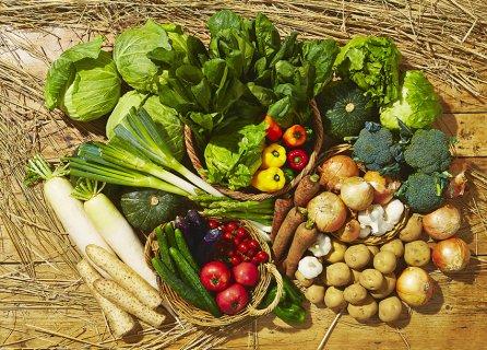 要出典 食材宅配サービス 生活くらぶ アースメイド野菜