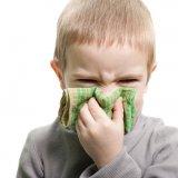 子供 鼻水 鼻をかむ 風邪