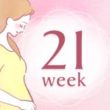 妊娠21週 アイコン