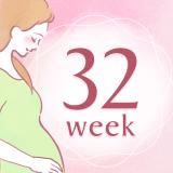 妊娠32週 アイコン