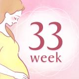 妊娠33週 アイコン