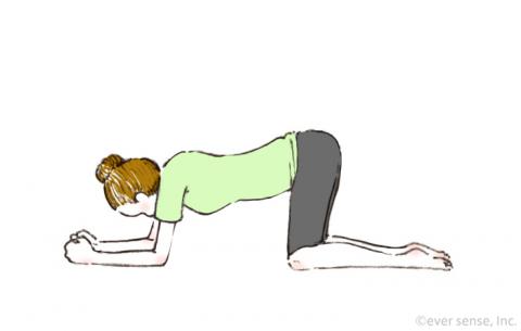 骨盤底筋体操 四つん這いの姿勢で引き締める eversense