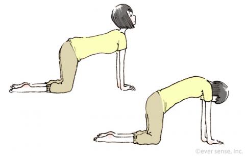 安産体操 腹筋背筋を動かす eversense