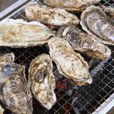 牡蠣 ノロウイルス 加熱 調理