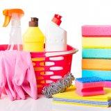 消毒 掃除 除菌 スプレー 洗剤