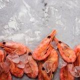 えび 海老 蝦