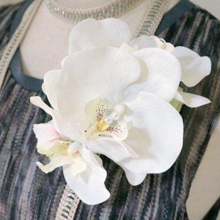 要出典 卒園式 入園式 コサージュ 胡蝶蘭のコサージュ プレシャス ブランカ