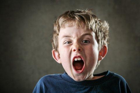子供 男の子 叫ぶ
