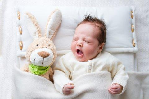 赤ちゃん ぬいぐるみ 寝てる