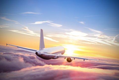 親子留学 飛行機 旅行