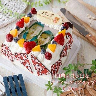 要出典 写真ケーキ エパヌイール フルーツたっぷり 四角い写真ケーキ