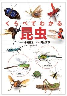 要出典 昆虫図鑑 くらべてわかる昆虫 (くらべてわかる図鑑)