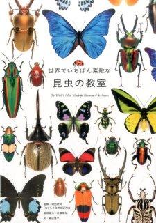 要出典 昆虫図鑑 世界でいちばん素敵な昆虫の教室