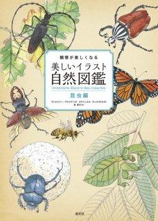 要出典 昆虫図鑑 観察が楽しくなる美しいイラスト自然図鑑 昆虫編
