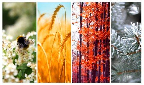 春夏秋冬 季節