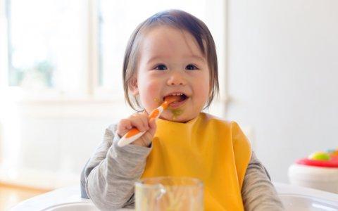離乳食 赤ちゃん 日本人