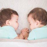 双子 赤ちゃん