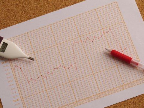 基礎体温 グラフ