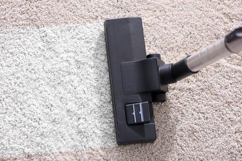 カーペット 絨毯 掃除機