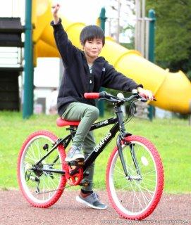 要出典 8歳 男の子 誕生日 プレゼント 子供用自転車 22インチ グラフィス 6段変速