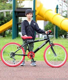要出典 小学校 入学祝い 男の子 子供用自転車 20インチ クロスバイク 男の子