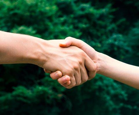 握手 男女 日本人