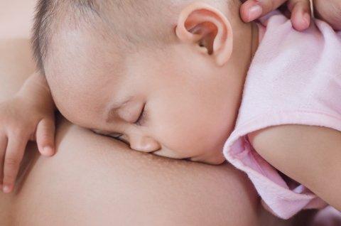 添い乳 日本人 赤ちゃん 授乳