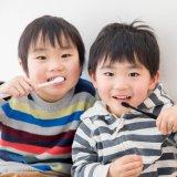 男の子 兄弟 日本人 歯磨き