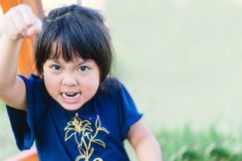 子供 日本人 一人っ子